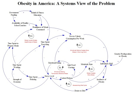 Public health is about viewing problems as a system of complex interactions, not in isolation.